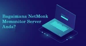 Bagaimana NetMonk memonitor Server Anda?